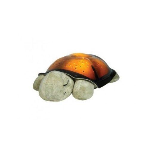 világító teknős barna