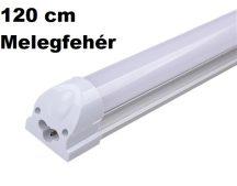 Armatúrás fénycső MelegFehér (120cm)
