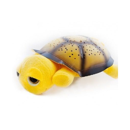 Bociszemű teknős éjjeli fény sárga