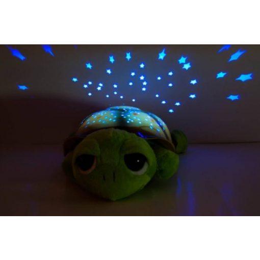 Bociszemű teknős éjjeli fény zöld