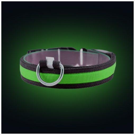 LED világító kutya nyakörv (Zöld)